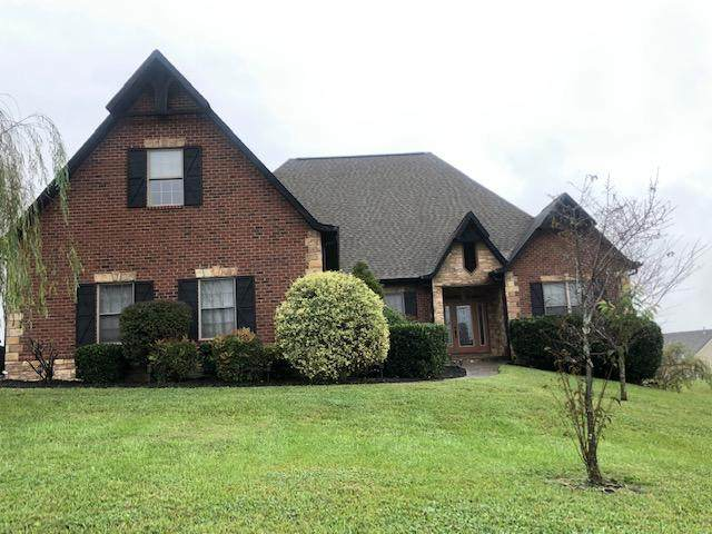 1256 Rippling Waters Circle, Sevierville, TN 37876 (#1131086) :: The Terrell Team