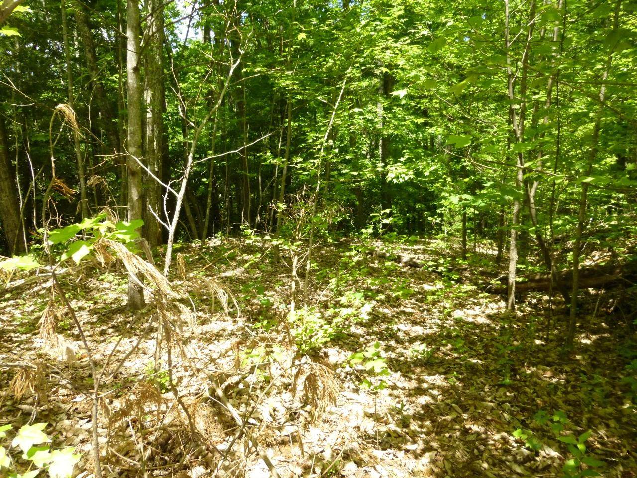 Lot 13 Sonshine Ridge Rd - Photo 1