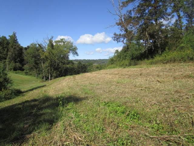 Indian Ridge Rd, Blaine, TN 37709 (#1131383) :: The Cook Team