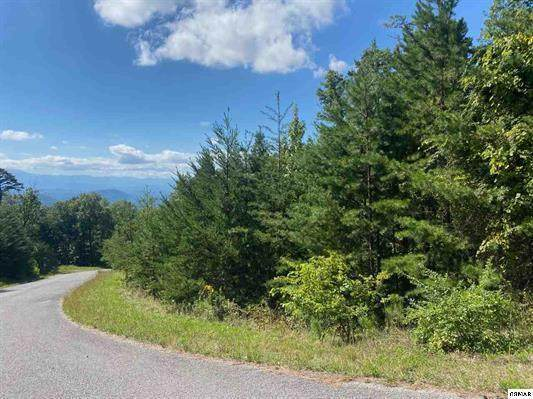 Lot 53 Mountain Ash Way, Sevierville, TN 37876 (#1132899) :: Adam Wilson Realty