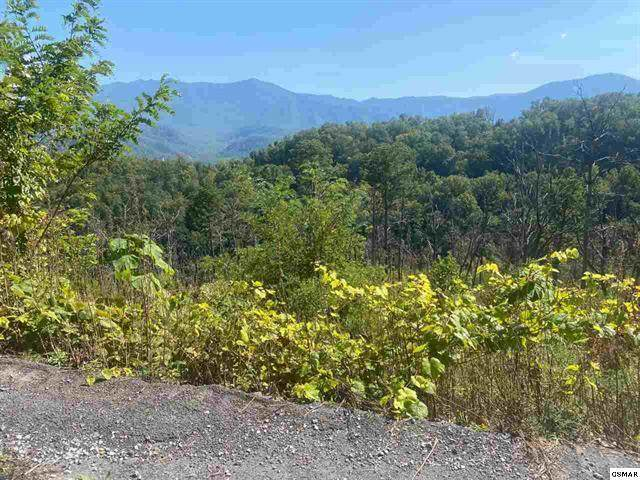 921 W Cedar Lane, Gatlinburg, TN 37738 (#1133159) :: The Terrell Team