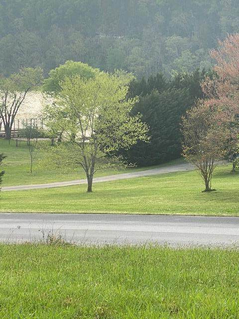 Lot 96 Marble View Drive, Kingston, TN 37763 (#1133349) :: Billy Houston Group