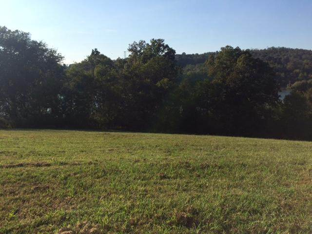 301 Riverbank Tr, Loudon, TN 37774 (#1133640) :: Tennessee Elite Realty