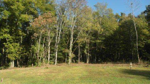Lot 147 Timberhead Lane, Louisville, TN 37777 (#1134244) :: The Cook Team
