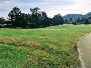 206 Brooks Landing Circle, Rogersville, TN 37857 (#1134270) :: Cindy Kraus Group | Realty Executives Associates