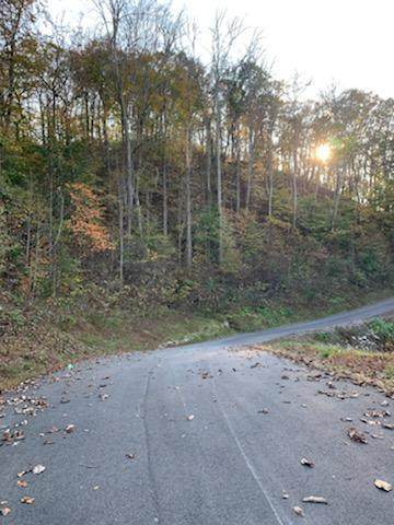 Lot 913 Eagle Court, Sharps Chapel, TN 37866 (#1134319) :: Realty Executives Associates