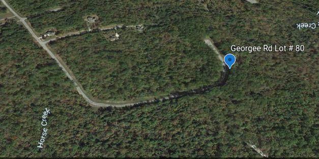 1.63 Acres Georgee Rd, Jamestown, TN 38556 (#1134566) :: Billy Houston Group