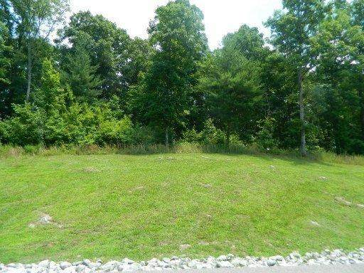 New Hope Road Ext Rd, Rockwood, TN 37854 (#1134579) :: Realty Executives Associates Main Street