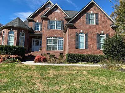 8411 Zinc Rd, Knoxville, TN 37938 (#1135515) :: Realty Executives