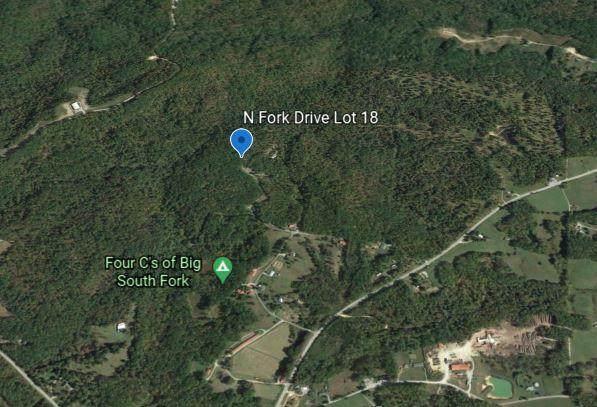 N Fork Drive, Jamestown, TN 38556 (#1135675) :: Realty Executives Associates Main Street