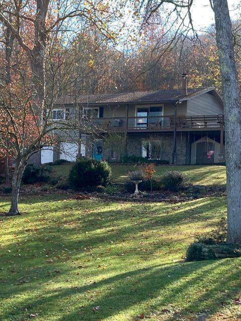 556 Anglers Cove Rd, Kingston, TN 37763 (#1136594) :: Tennessee Elite Realty