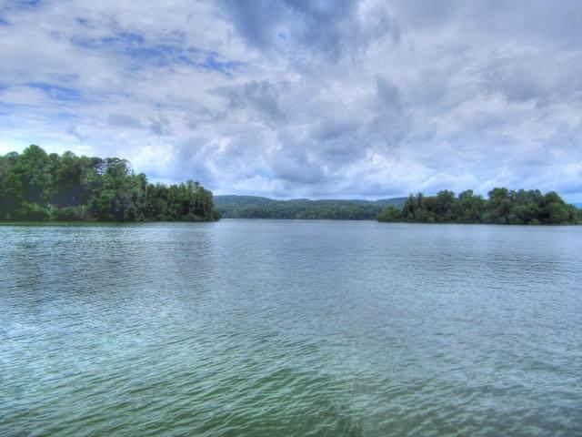 Lot 597 Crane Point, Rockwood, TN 37854 (#1137034) :: Billy Houston Group