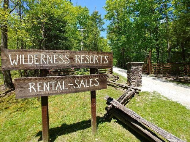 Wilderness Tr, Oneida, TN 37841 (#1137562) :: Billy Houston Group