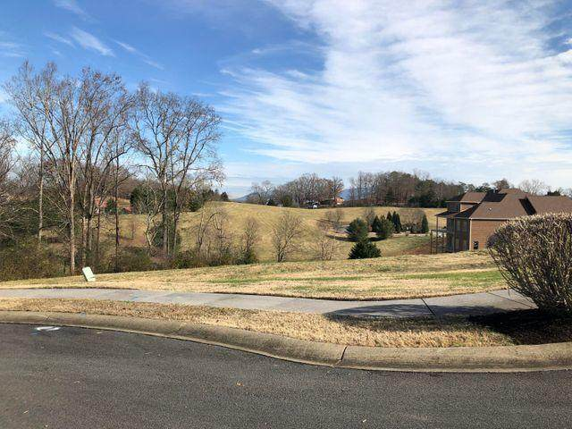 Lot 28 Royal Chase Court, Sevierville, TN 37876 (#1137745) :: The Terrell Team