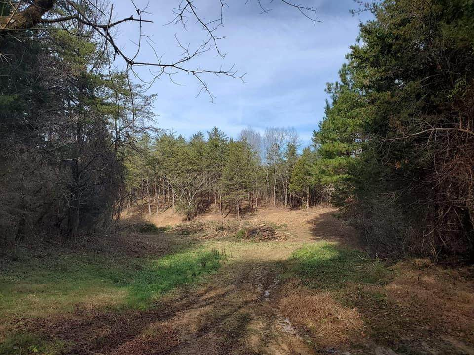 668,678 + Cold Springs Rd - Photo 1