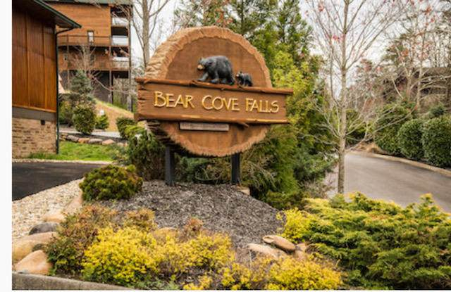 906 Mcmakin Way, Pigeon Forge, TN 37863 (#1139648) :: Billy Houston Group
