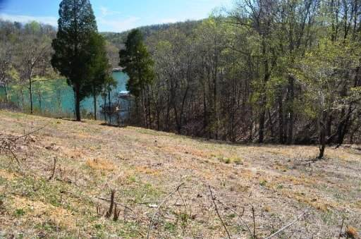 Buckeye Lane, LaFollette, TN 37766 (#1140261) :: Adam Wilson Realty