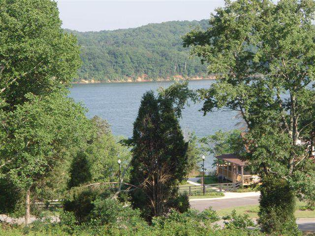 Docks Of The Bay Drive, Harriman, TN 37748 (#1140961) :: The Cook Team