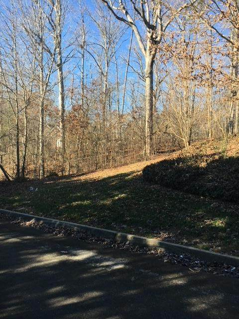 9513 Shadow Lane, Knoxville, TN 37922 (#1142120) :: Billy Houston Group