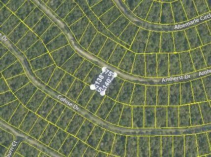163 Amherst Drive, Fairfield Glade, TN 38558 (#1142384) :: Realty Executives Associates Main Street