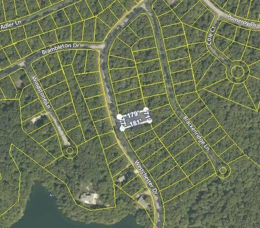 349 Westchester Drive, Crossville, TN 38558 (#1142791) :: Adam Wilson Realty