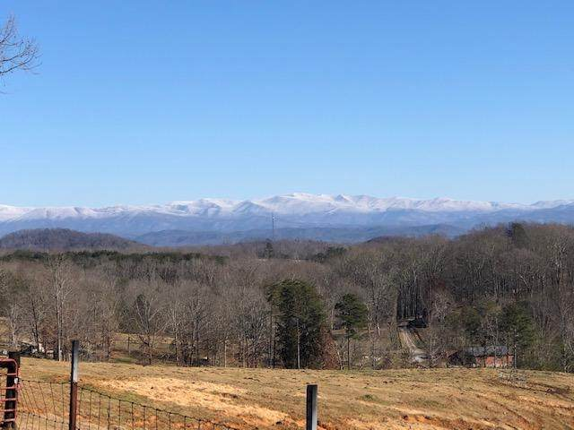 Red River Rd, Englewood, TN 37329 (#1143479) :: Billy Houston Group