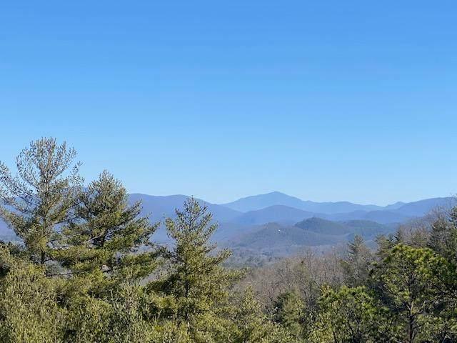 Hawk View Rd, Townsend, TN 37882 (#1143934) :: Cindy Kraus Group | Realty Executives Associates