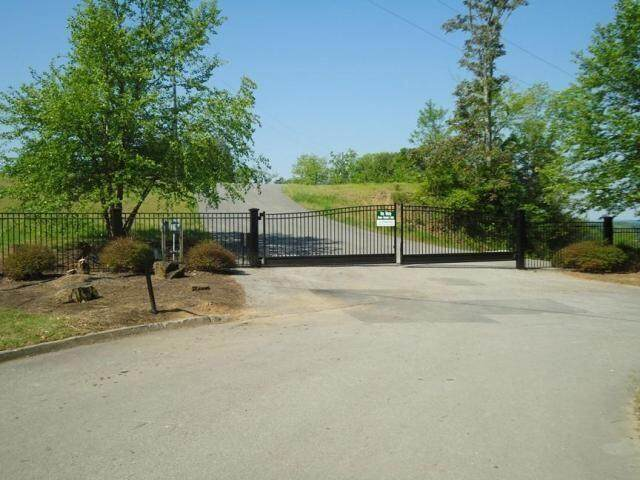 Waterfront Way, Sevierville, TN 37876 (#1144560) :: Billy Houston Group