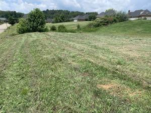 112 Rockbridge Greens Blvd, Oak Ridge, TN 37830 (#1144766) :: Billy Houston Group