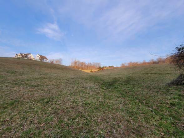 Deerfield Way, LaFollette, TN 37766 (#1145584) :: JET Real Estate