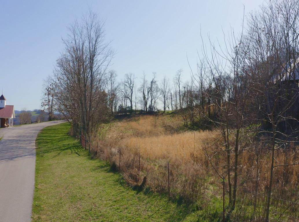 165 Acres Poplar Grove Rd - Photo 1