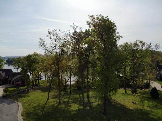 454 Shoreline Drive, Spring City, TN 37381 (#1149424) :: Adam Wilson Realty