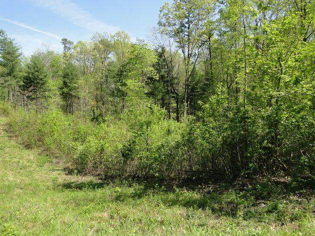000 Epperson Rd, Tellico Plains, TN 37385 (#1149629) :: Shannon Foster Boline Group