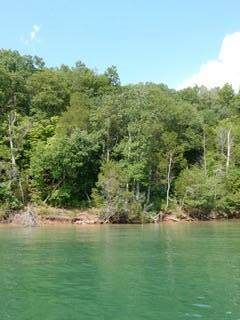 lot 784 Russell Brothers Rd, Sharps Chapel, TN 37866 (#1149785) :: Cindy Kraus Group | Realty Executives Associates