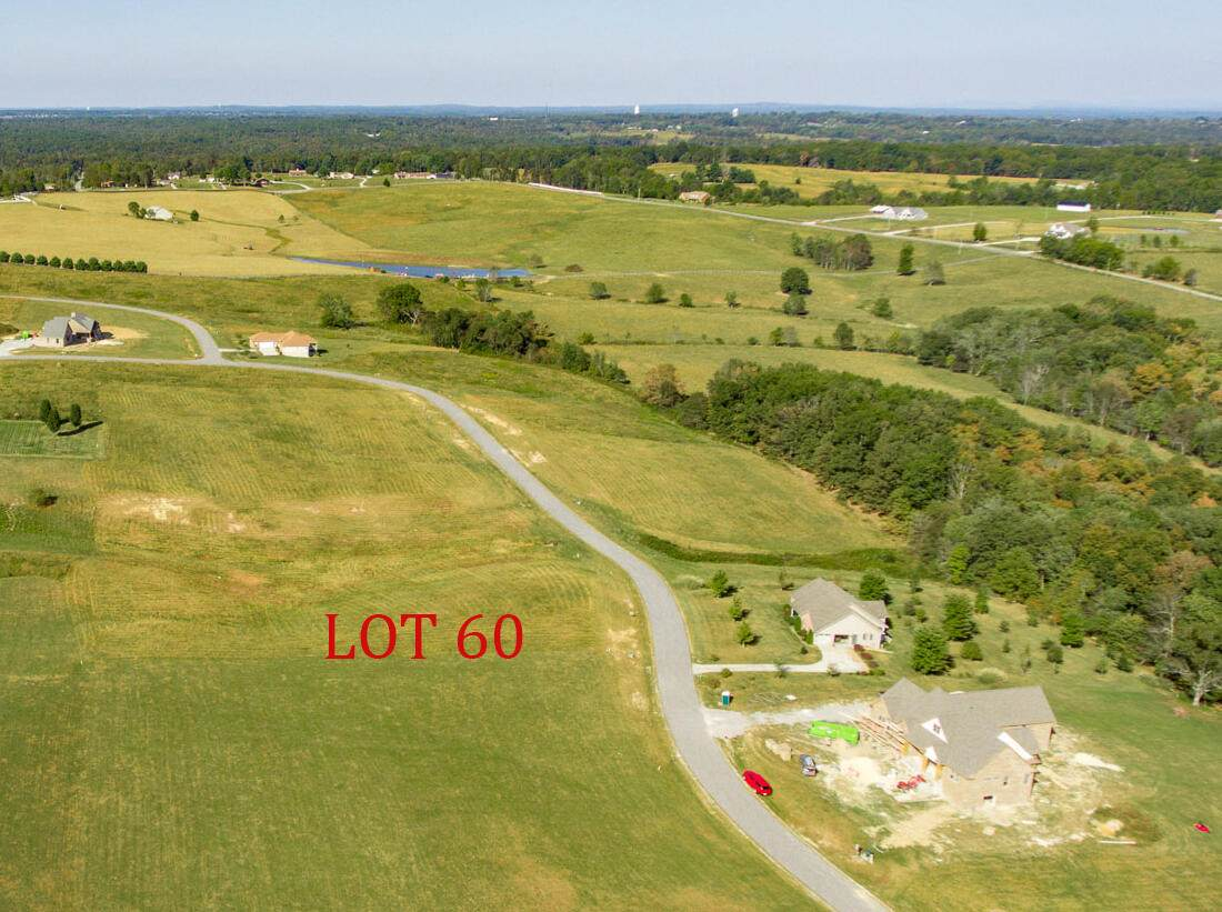 Shadow Mountain Dr.   Lot 60 - Photo 1