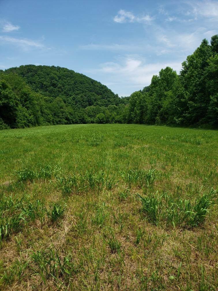 8.76 acres Highway 39 E - Photo 1