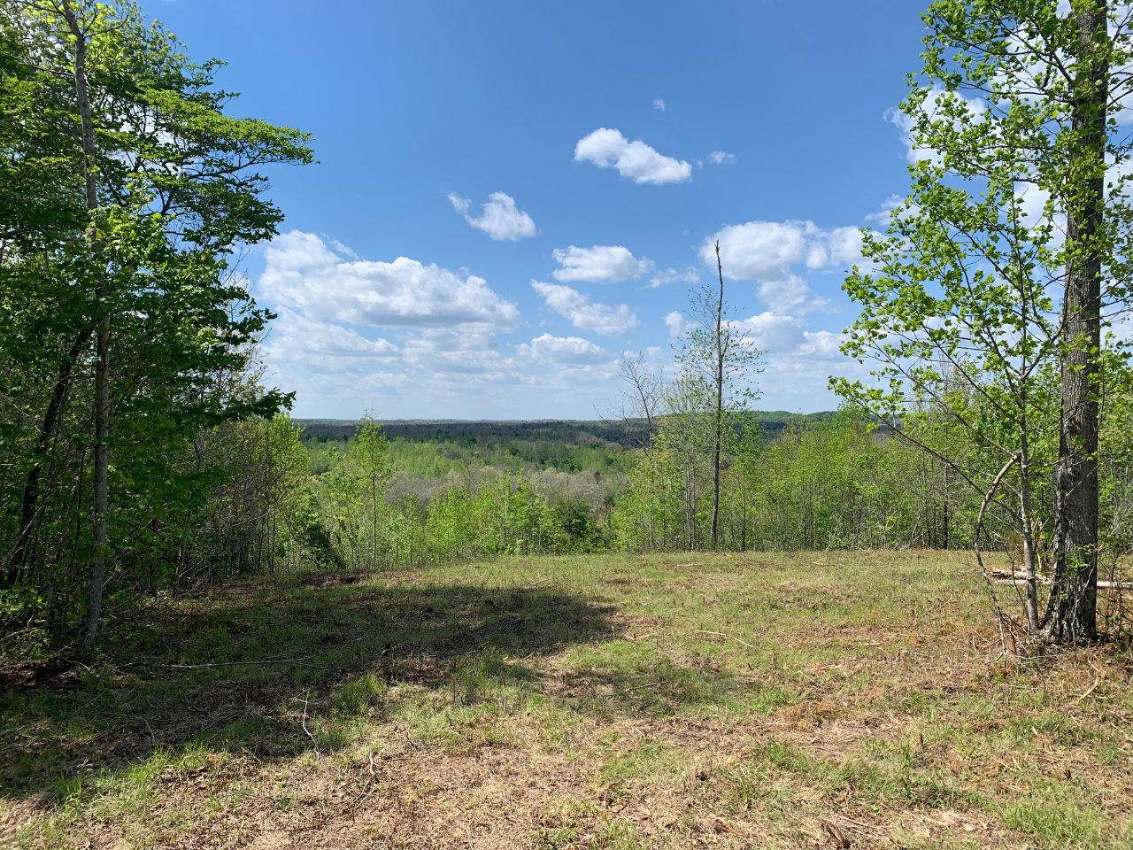 Blueberry Hill Rd - Photo 1
