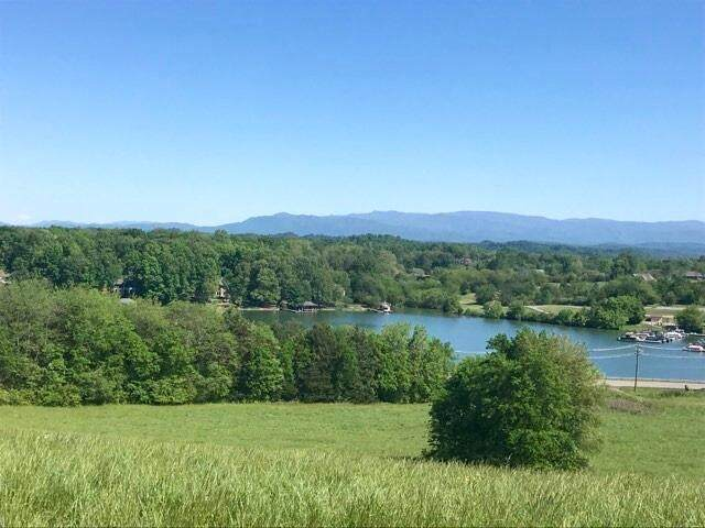 3160 Niles Ferry Rd, Vonore, TN 37885 (#1152248) :: Realty Executives Associates