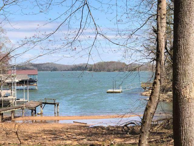 675 Blue Water Tr, Spring City, TN 37381 (#1152966) :: Billy Houston Group