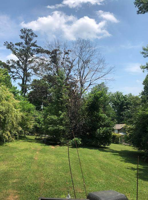 5419 Weston Rd, Knoxville, TN 37918 (#1155014) :: JET Real Estate