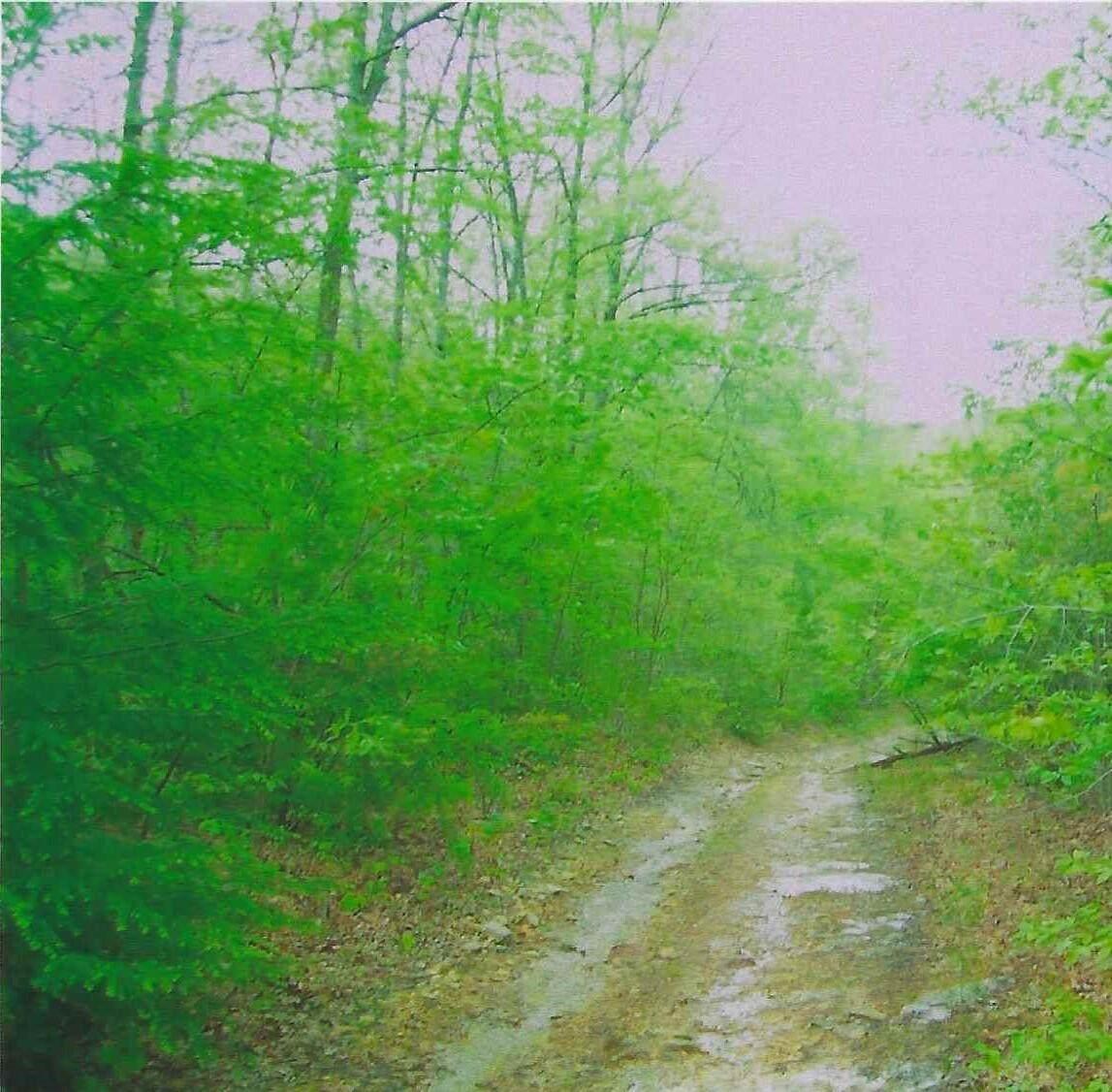 326 Scenic Drive - Photo 1