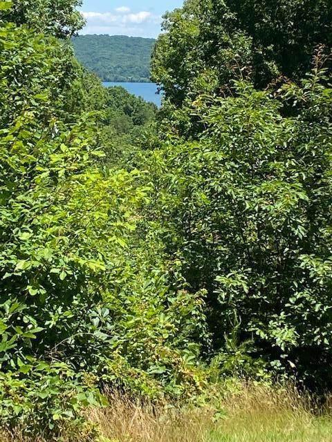 210 Reserve Pointe, Kingston, TN 37763 (#1157202) :: A+ Team
