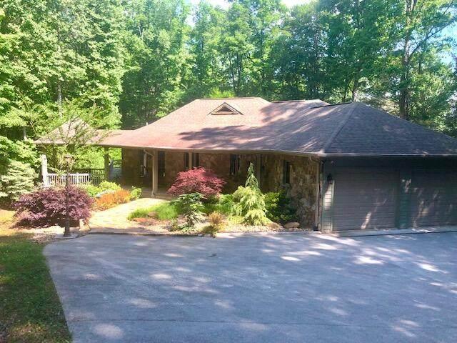 145 Hemlock Bluff Lane, Caryville, TN 37714 (#1157383) :: Cindy Kraus Group | Realty Executives Associates