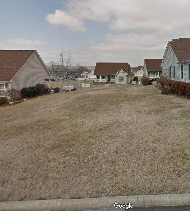 Chicory Drive, Andersonville, TN 37705 (#1158197) :: Shannon Foster Boline Group