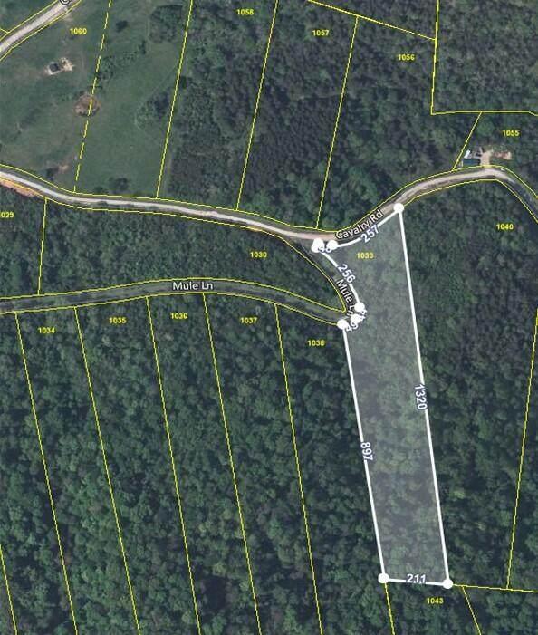 Calvary Rd, New Tazewell, TN 37825 (#1158811) :: Billy Houston Group