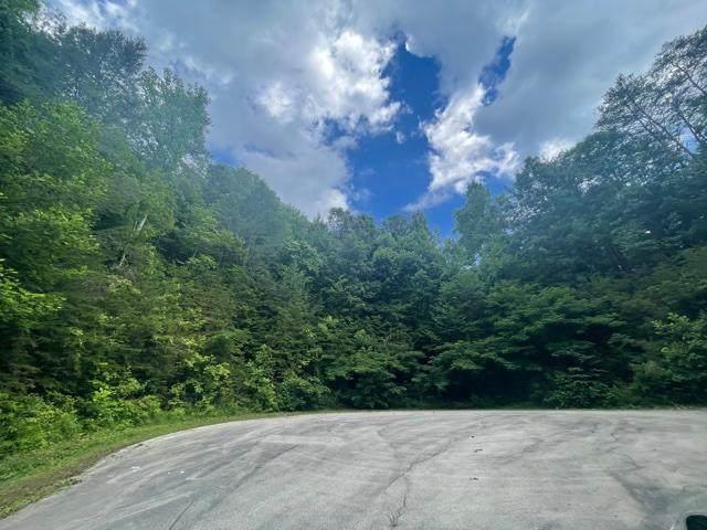 Lot 31 Bird Hill Rd, Sevierville, TN 37876 (#1159131) :: The Cook Team