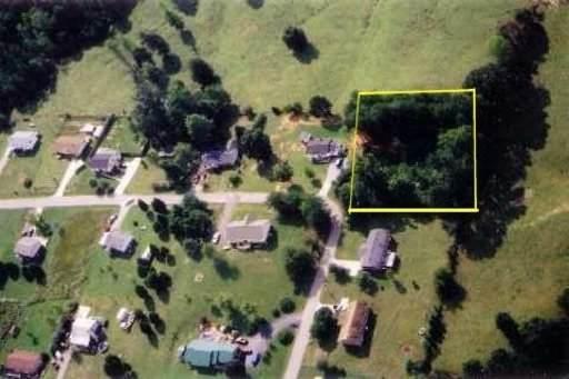Scenic Circle, Tellico Plains, TN 37385 (#1160017) :: Realty Executives Associates