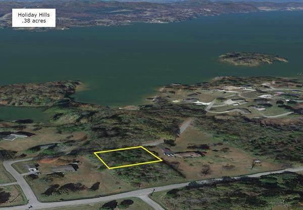 381 Lakeshore View Drive, Kingston, TN 37763 (#1160852) :: Billy Houston Group