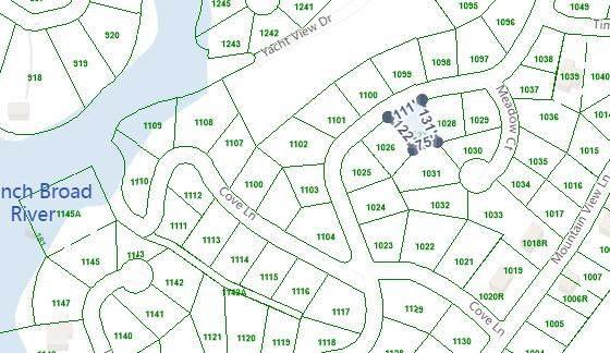 Mountain View Lane, White Pine, TN 37890 (#1162035) :: Cindy Kraus Group   Realty Executives Associates