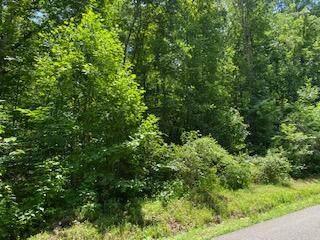 5644 Get Good Hollow Rd, Loudon, TN 37774 (#1162177) :: Catrina Foster Group